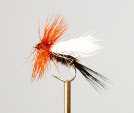 Hairwing Coachman