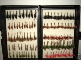 100 Dries and Nymphs Fly Fishing Flies in a Fly Box