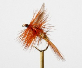 Hares Ear and Gold Dry Fly