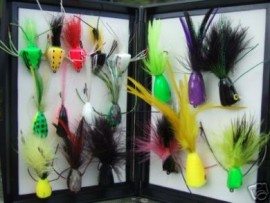BASS BUG POPPER COLLECTION