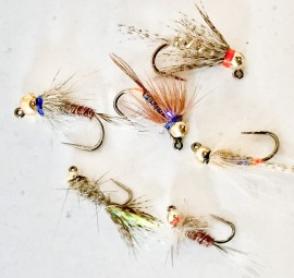 Tungsten Bead Head Jig Nymph Collection #1