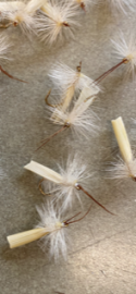 Snow Flake Tent Wing Caddis