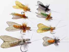 8 Adult Caddis Collection Realistic Foam
