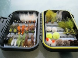 Carp On The Fly - An Essential Collection Of 20 patterns 2 of each fly-Boxed