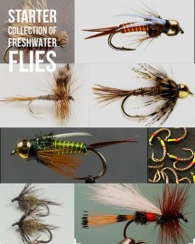 24 Premium Fresh water Fly Collection