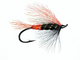 Max Canyon  steelhead and salmon pattern