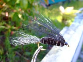 Hairy Dog trout fly Streamer