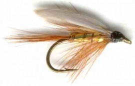 Wickham's Fancy Caddis  Wet Fly