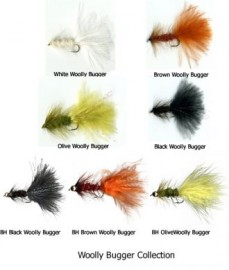 The Complete Wooly Bugger Collection Boxed